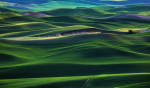 Palouse_best_photos_050
