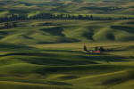 Palouse_best_photos_065