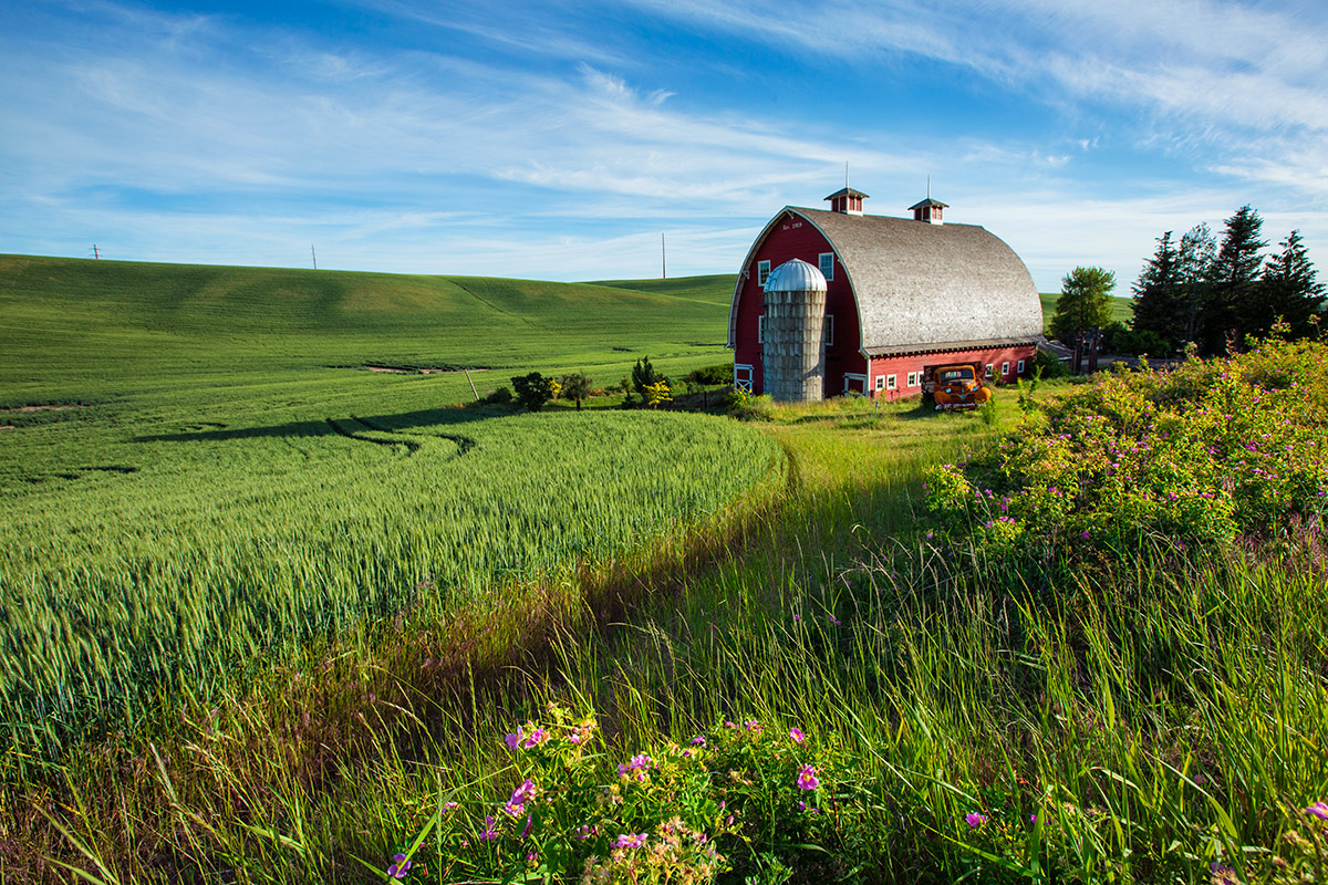 Palouse_best_photos_089