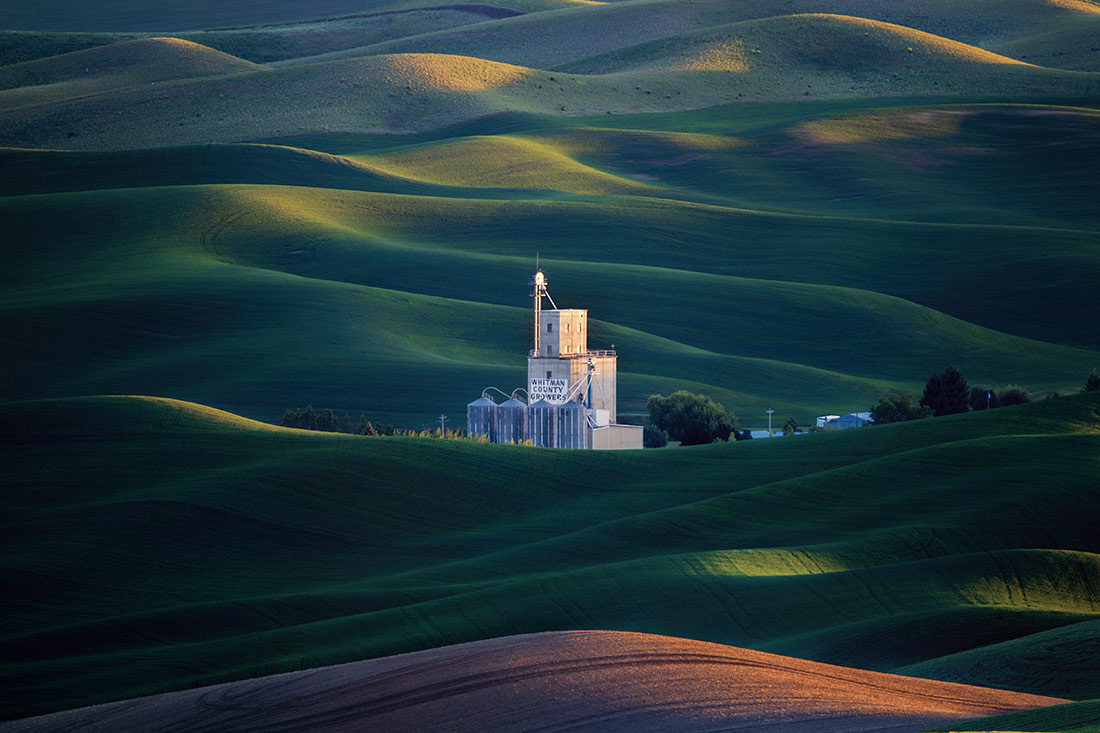 Palouse_best_photos_099