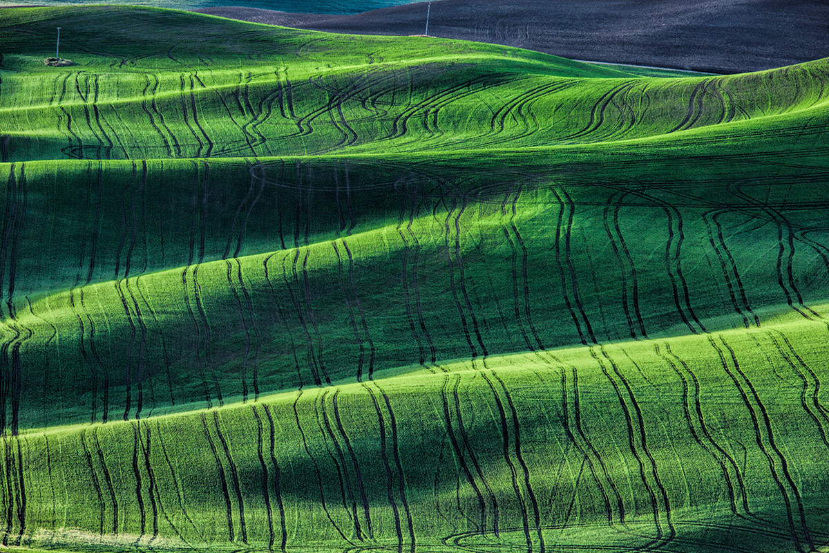 Palouse_best_photos_105