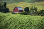 Palouse_best_photos_115