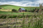 Palouse_best_photos_116