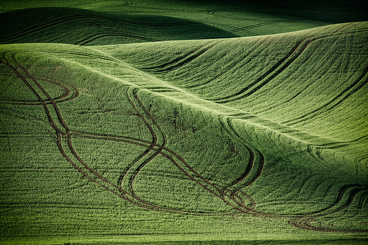 Palouse_best_photos_119