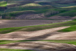 Palouse_best_photos_130