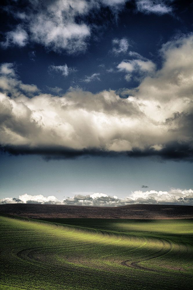 Palouse_best_photos_135