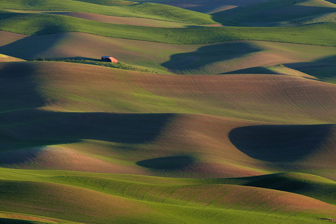 Palouse_best_photos_139