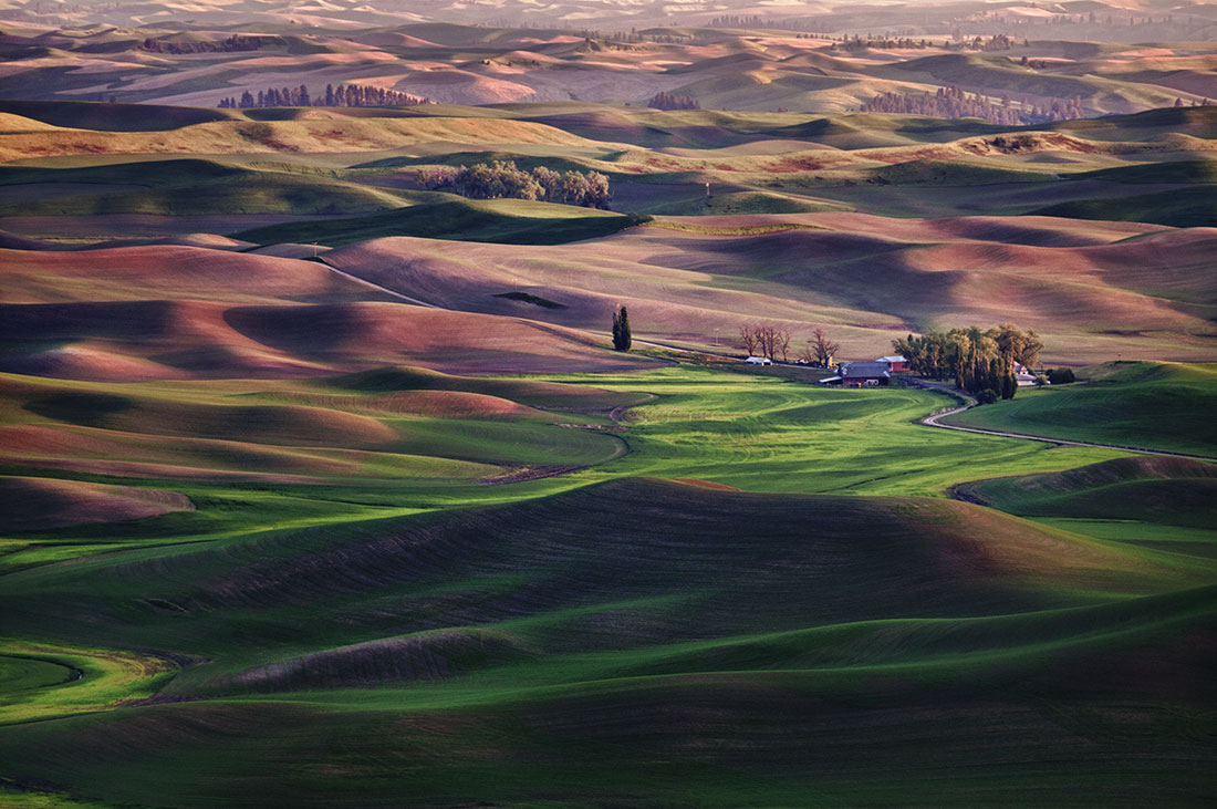 Palouse_best_photos_142