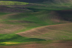 Palouse_best_photos_145