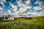 Palouse_best_photos_147