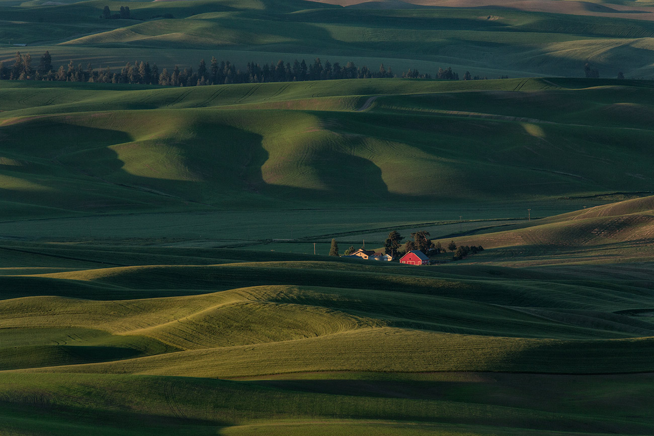 The view from Steptoe Butte