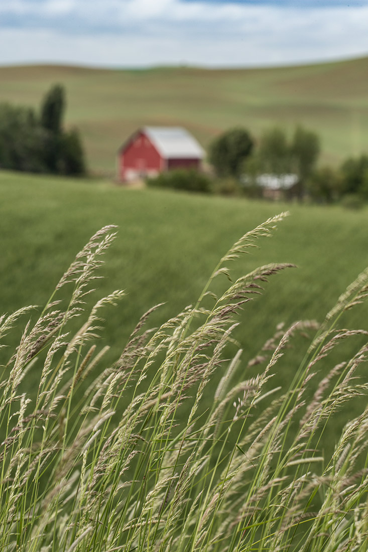 Palouse_workshop_2016_43