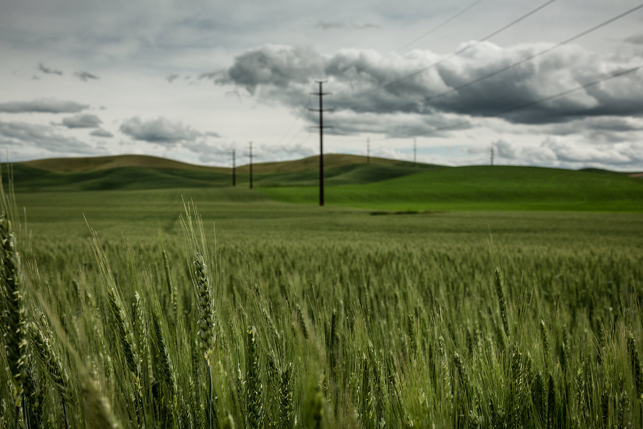 Palouse_workshop_2016_45