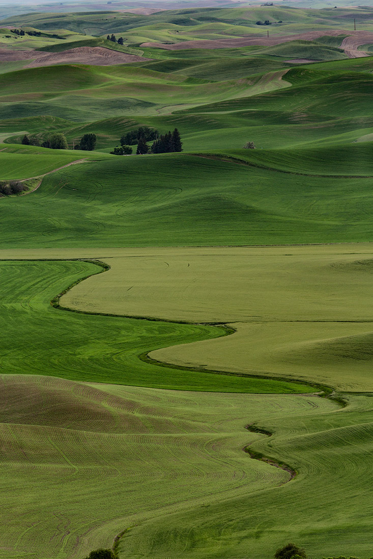 Palouse_workshop_2016_60