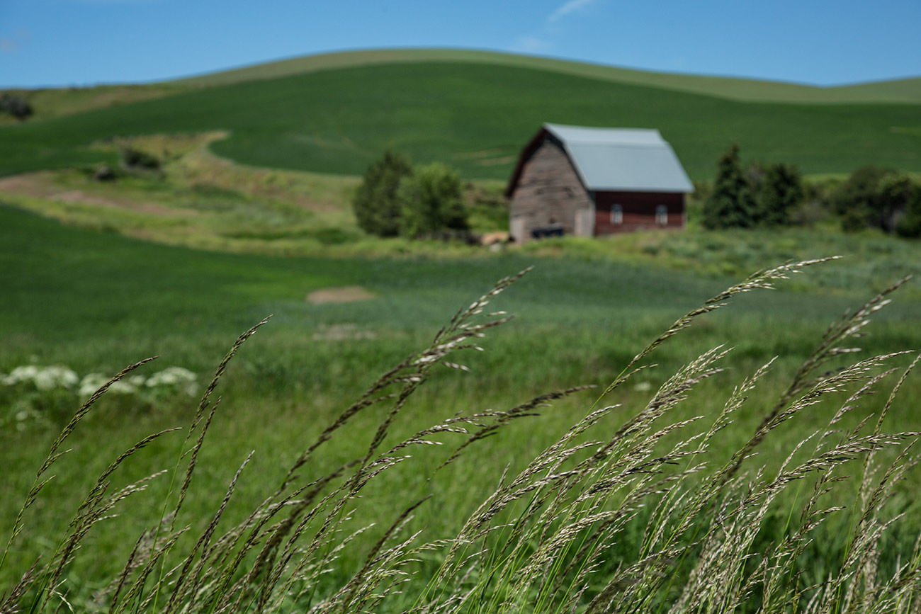 Palouse_workshop_2016_70