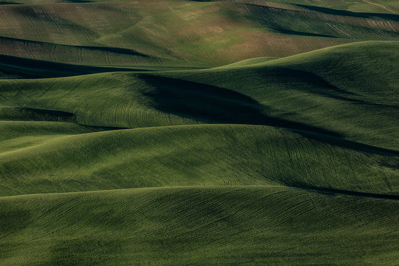 Palouse_workshop_2016_78
