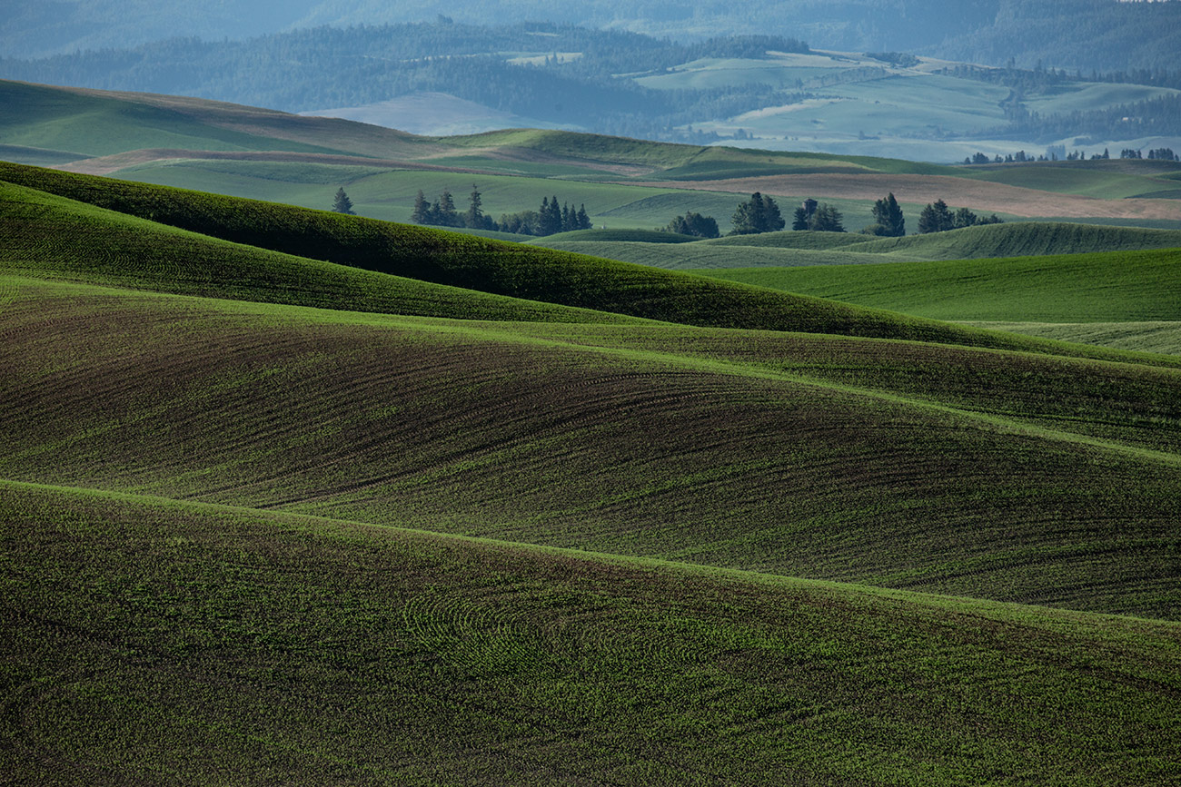 Palouse_workshop_2016_86