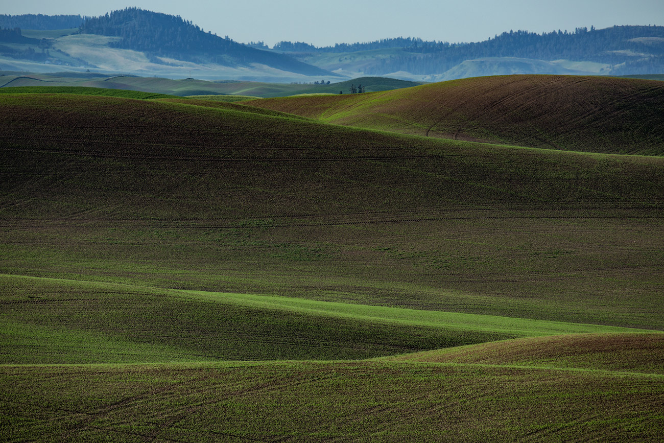 Palouse_workshop_2016_87