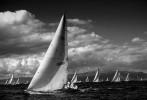 racetime in marina del rey