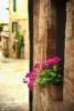 Monteciello in Tuscany