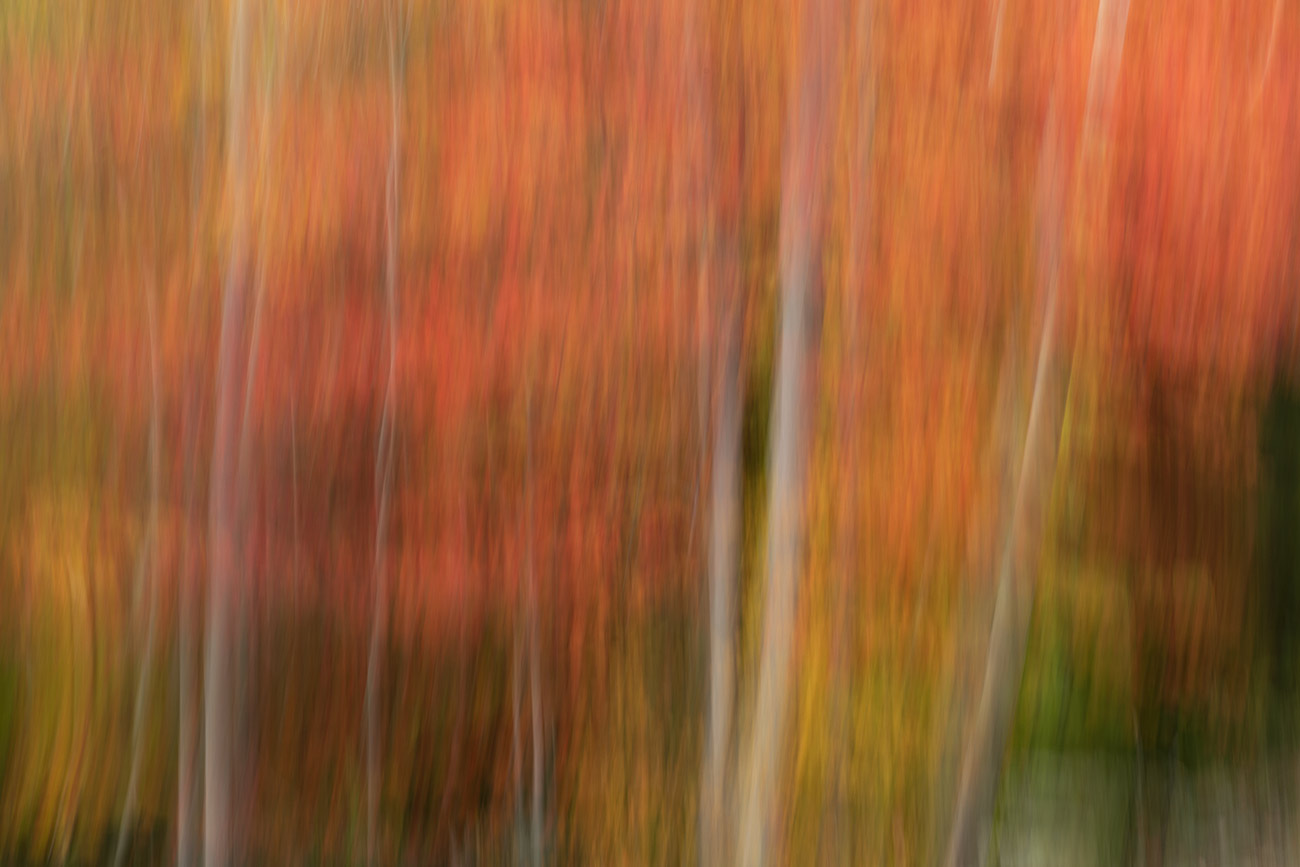 acadia_national_park_2018_workshop_15
