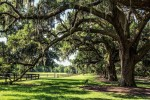 The Boone Plantation in South Carolina