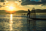 The fisherman of Inle Lake