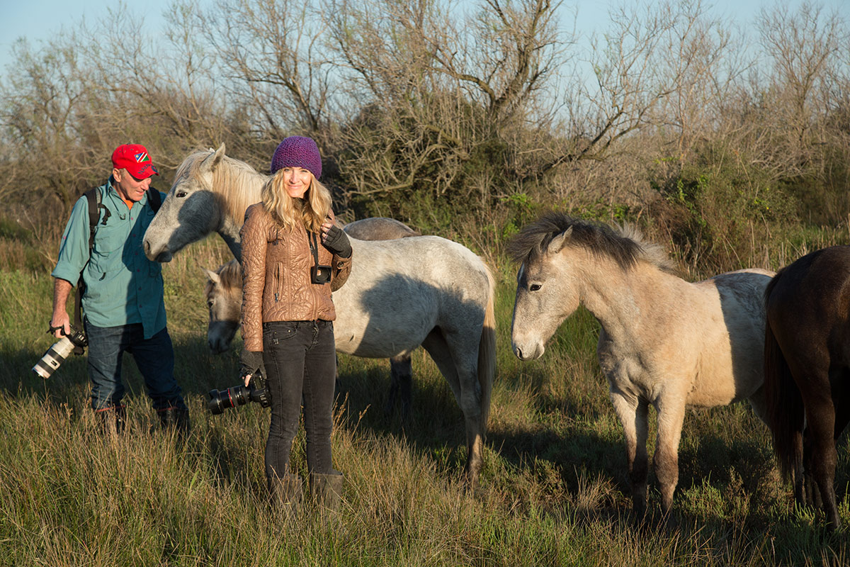 camargue_horse_workshop_2014_2013