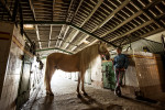 camargue_horse_workshop_france_2016_21