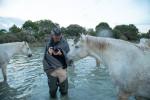 camargue_horse_workshop_france_2018_86