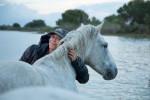 camargue_horse_workshop_france_2018_87