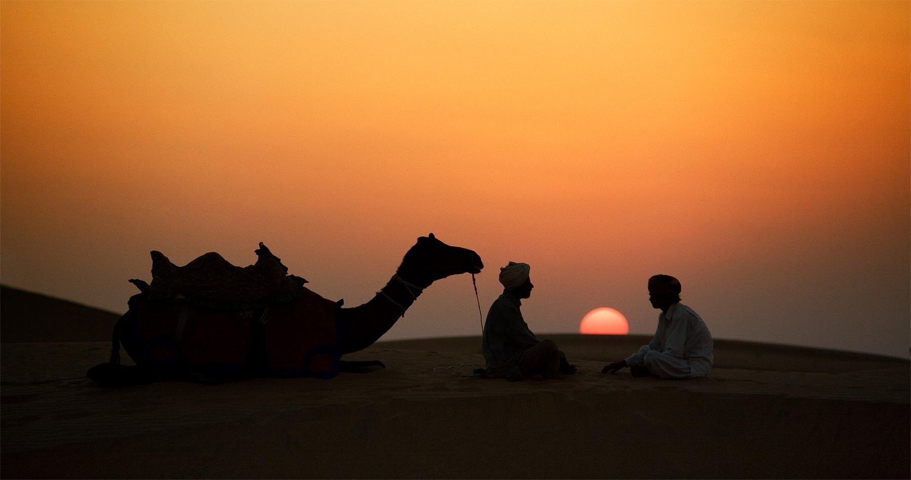 camels_sunrise_india_intro