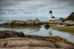 Holly by Annisquam Harbor Lighthouse