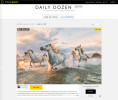 Nat Geo Daily Dozen winner with my Camargue Horses