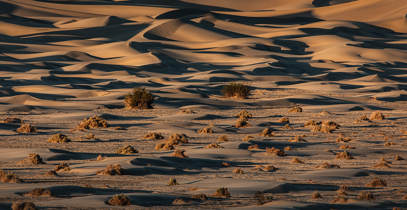 death_valley_201-_workshop_17