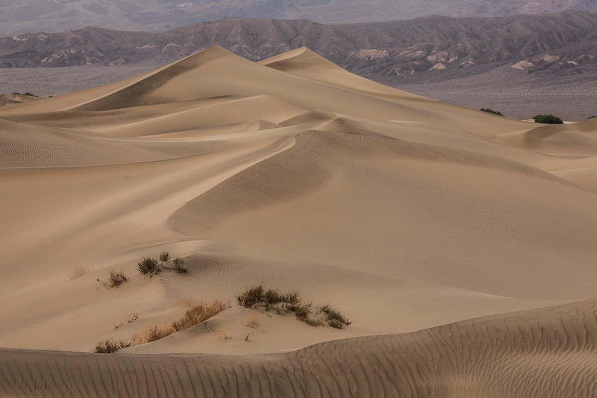 death_valley_2014_workshop_24