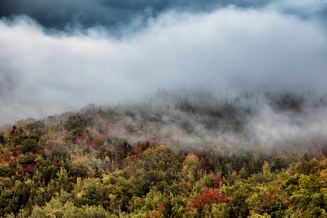 fall_color_17