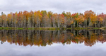 fall_color_reflections_maine_panorama_sweet