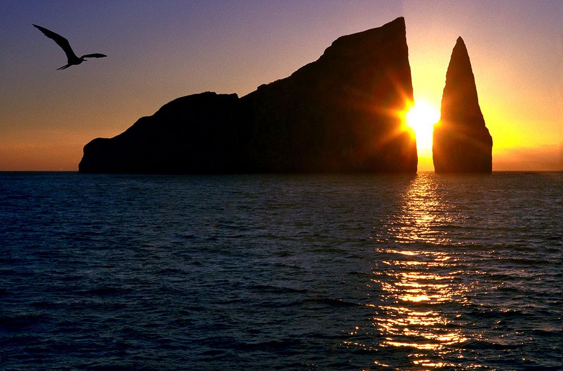 galapagos_islands068