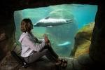 Holly in the Newport Aquarium