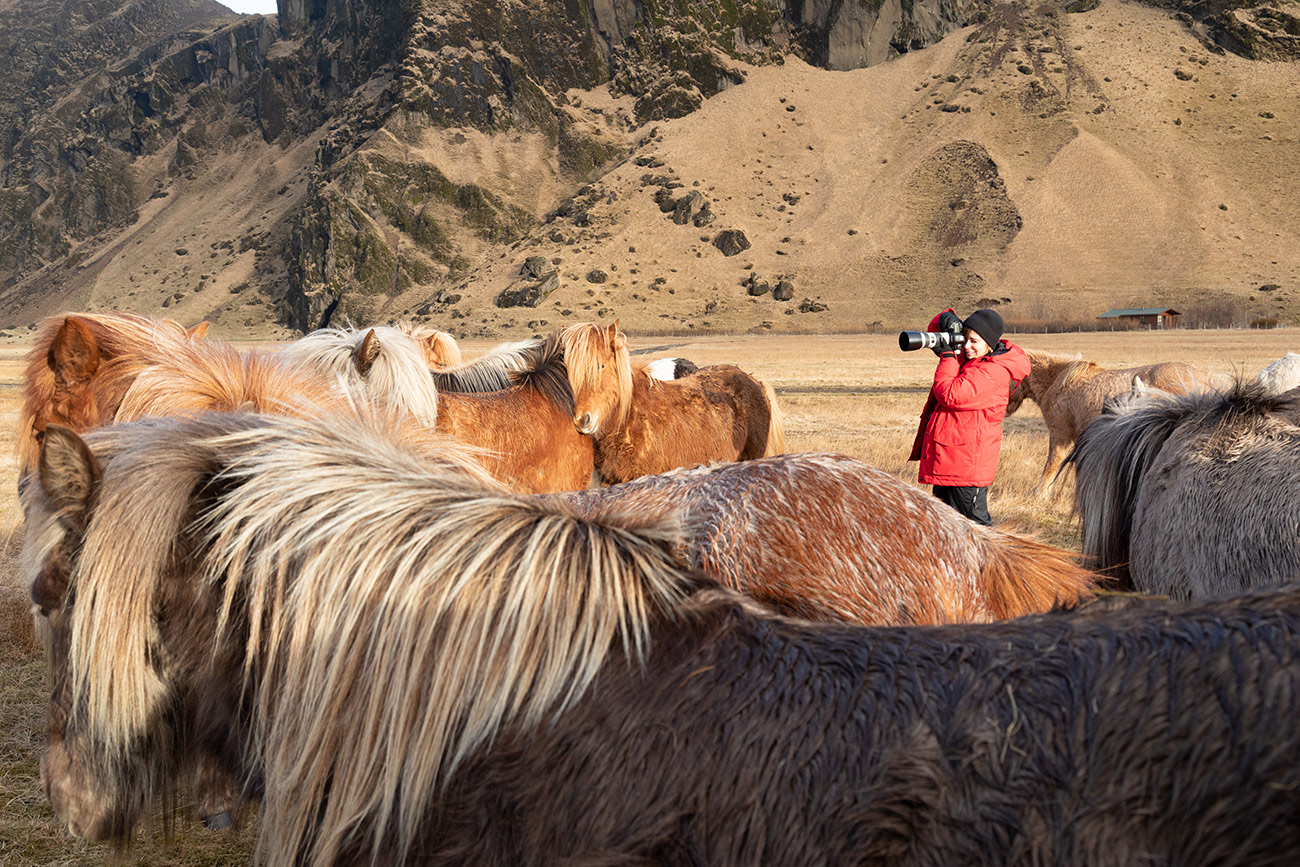 Kelly with the horses