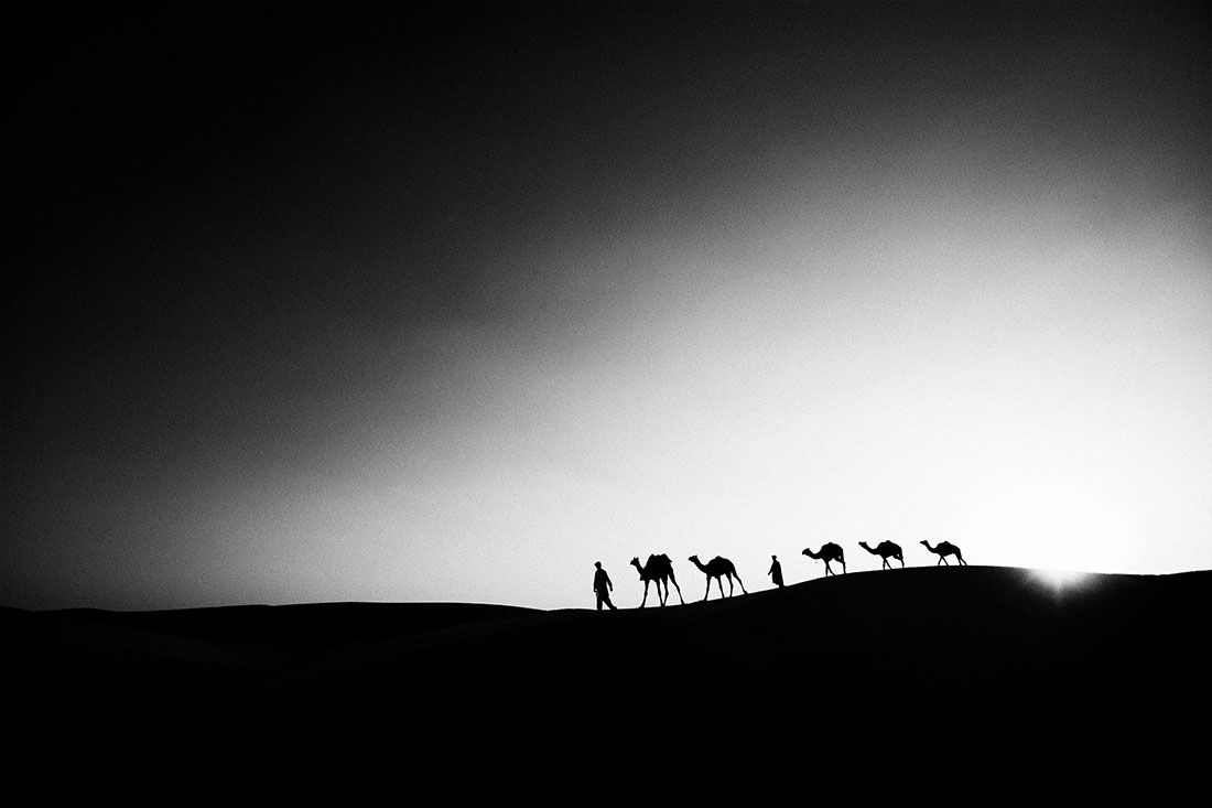 Camels and their owners in Rajistan, India