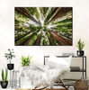 interior_wall_templates_scott_stulberg_145