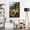 interior_wall_templates_scott_stulberg_203
