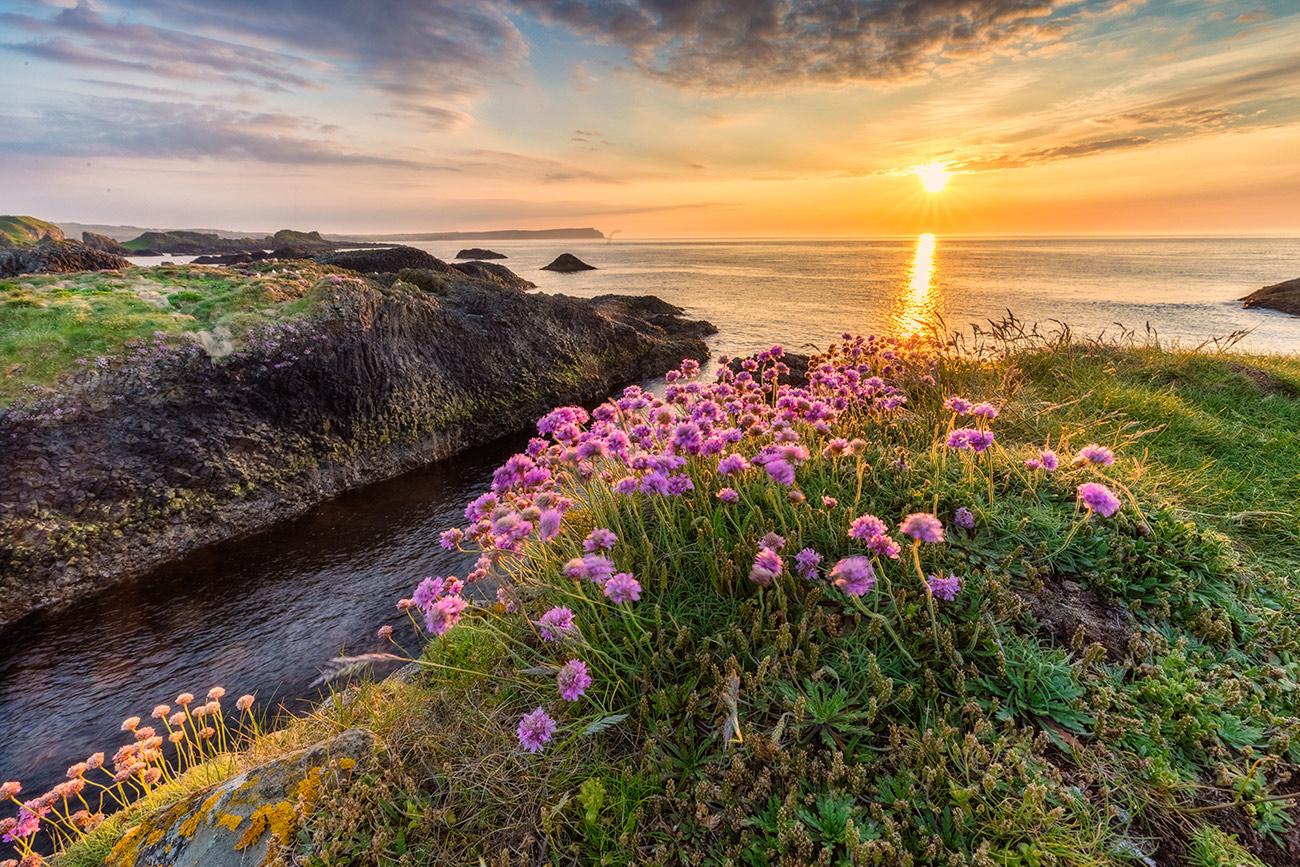 The north coast of Ireland