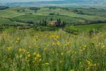 italy_venice_tuscany_2016_40