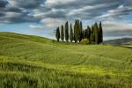 italy_venice_tuscany_2016_55
