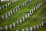 The LA Veterans Cemetary