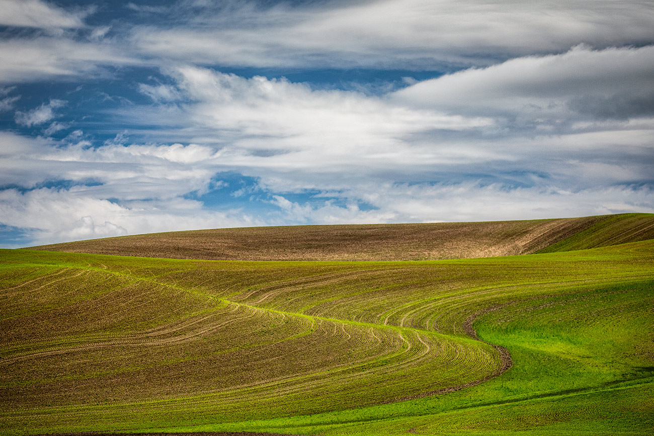 palouse_2019_workshop_04