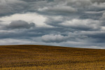 palouse_2019_workshop_27
